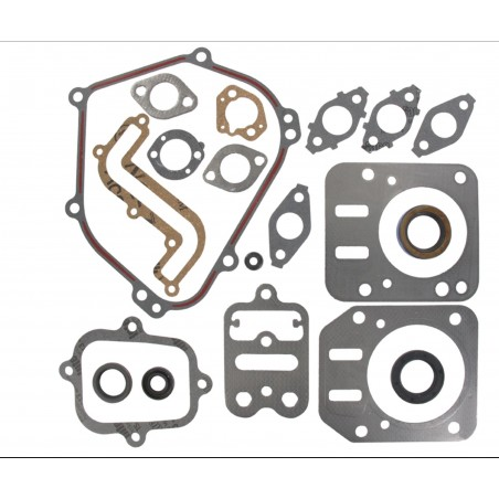 Kit joints moteur Briggs and Stratton 791797